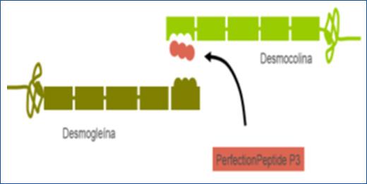 Peeling Biomimético para arrugas de expresión