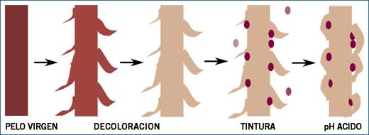 Los aceites que rellenan el cabello