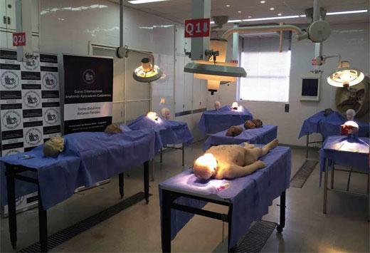 En abril, curso internacional de anatomía aplicada en cadáveres ...